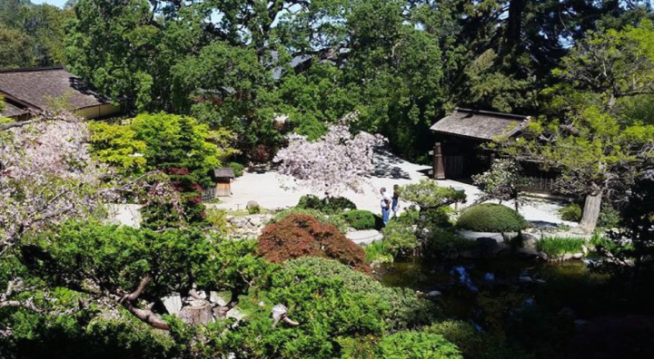 Hakone Pavilion