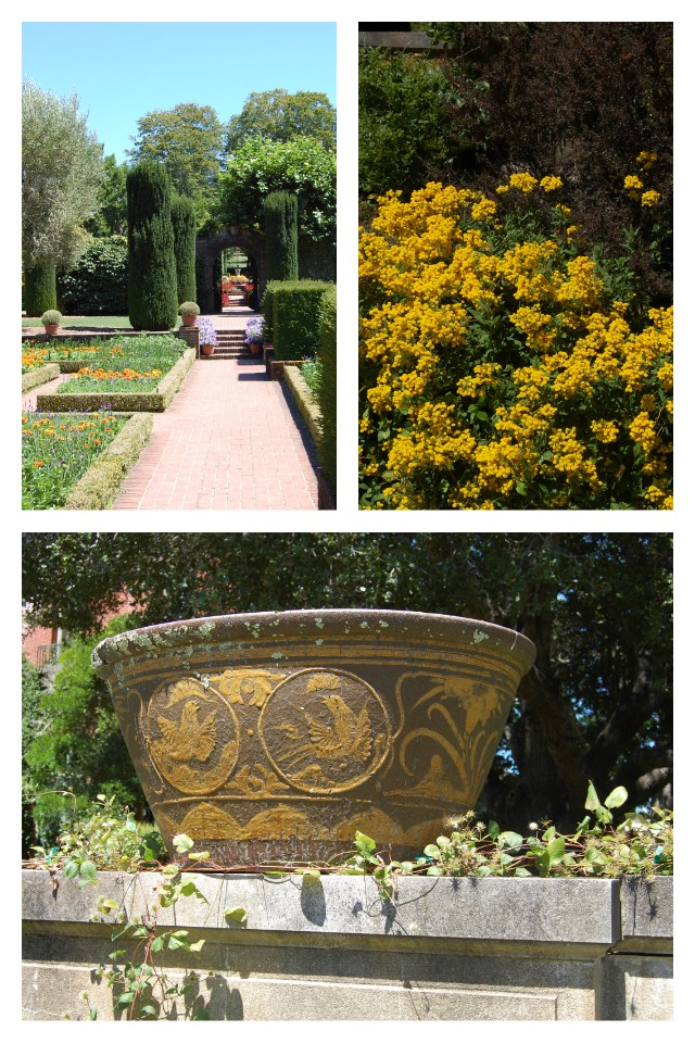 Filoli Lower Terrace Collage