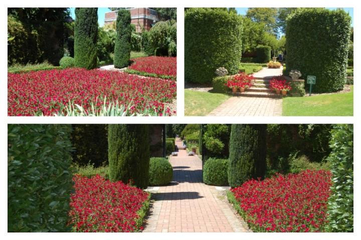 Filoli Walled Garden Collage