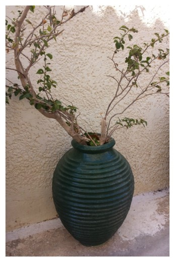 Pots in Greece Green Urn