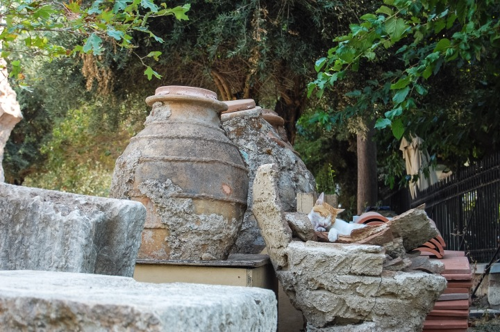 cat-grooming-in-pottery-artifacts-in-plaka