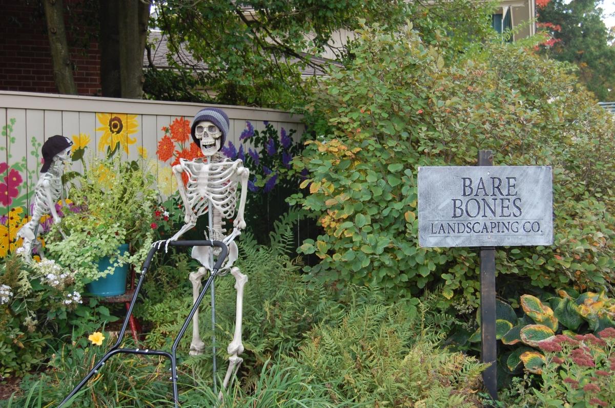 pond-house-cafe-skeletons-2