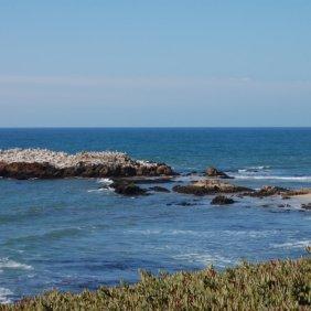 view-from-pescadaro-beach