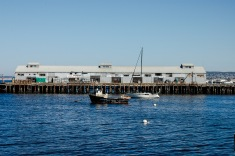 Monterey Bay 3