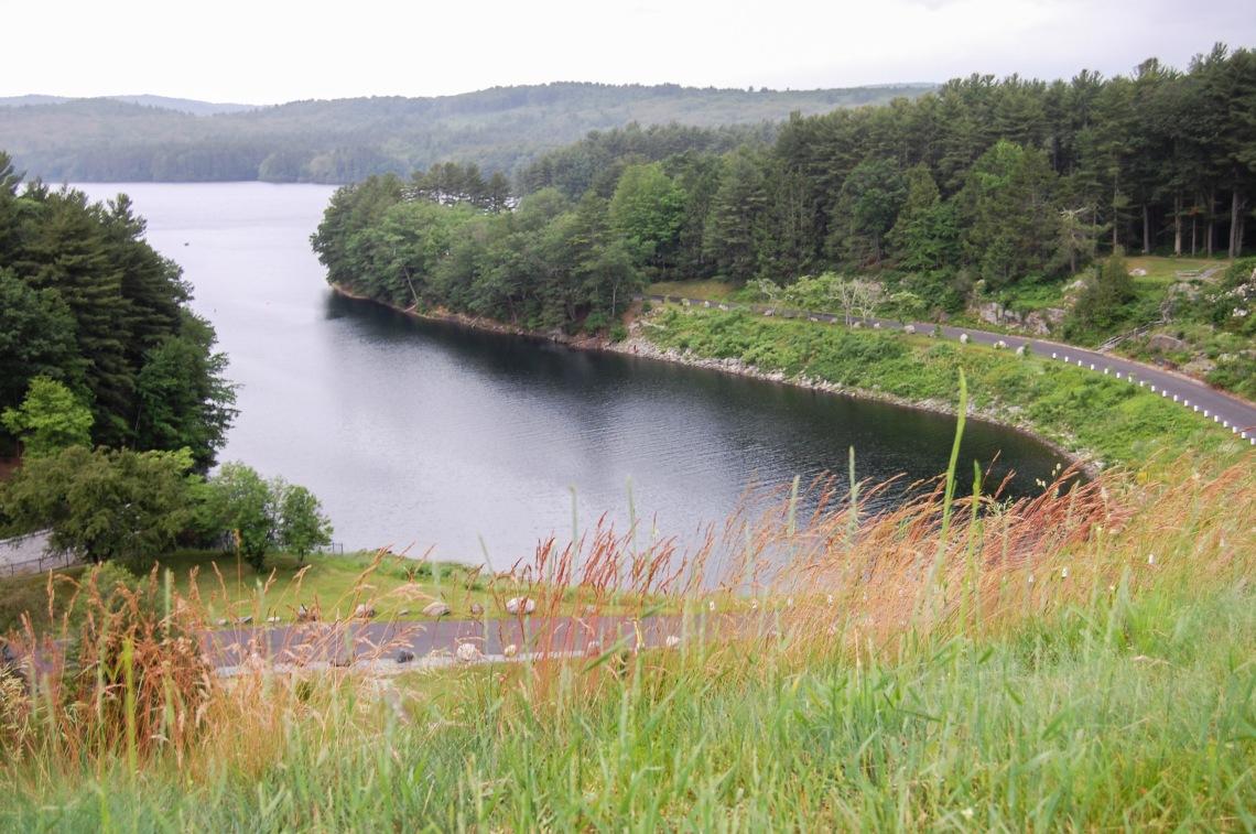 Lake McDonough View 2