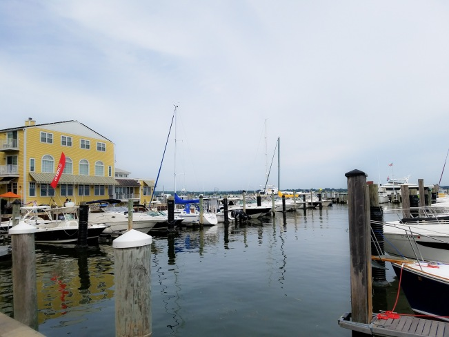 Saybrook Point Boats