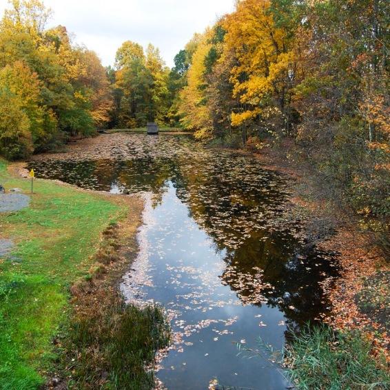 Countryside Park - Fall