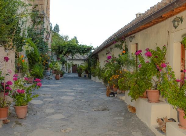 Mystras Pantanassa Courtyard-2_edited_edited_edited