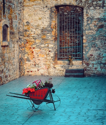 Red Wheelbarrow in Nafplio 3
