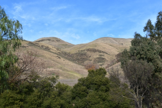 View of Hills from Sandy Wool Lake