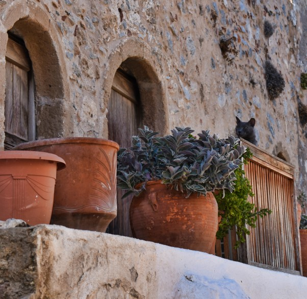 Monemvasia Cat 5 L