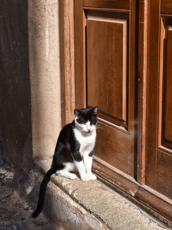 Monemvasia Cat L 2
