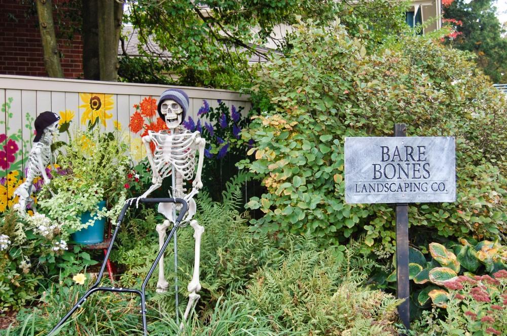 Bare Bones Landscaping CoL2