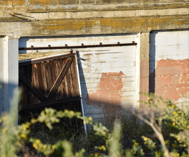 A broken door at the Bayside Canning Company.