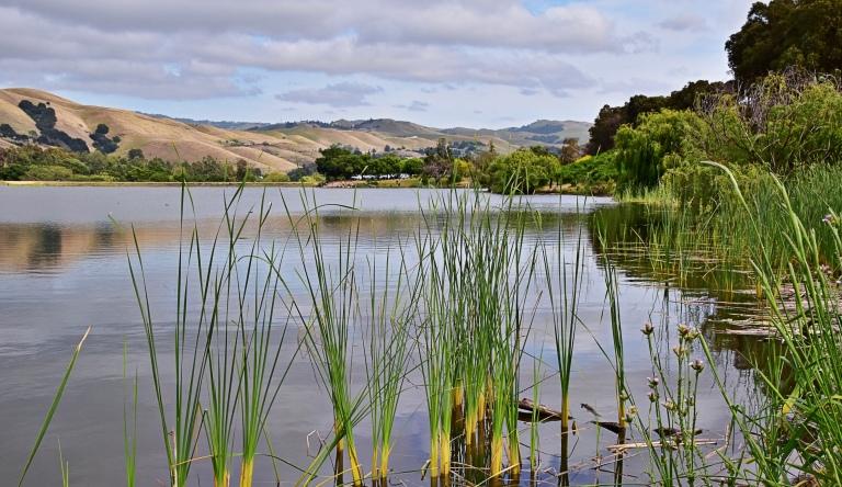 Sandy Wool Lake 1