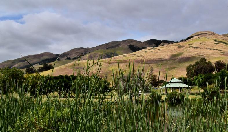 Sandy Wool Lake 4