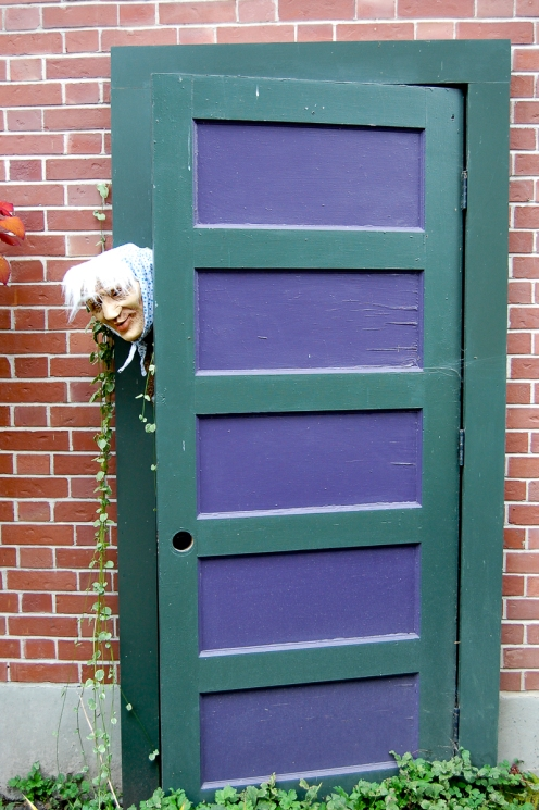 Pond House Halloween Door LR