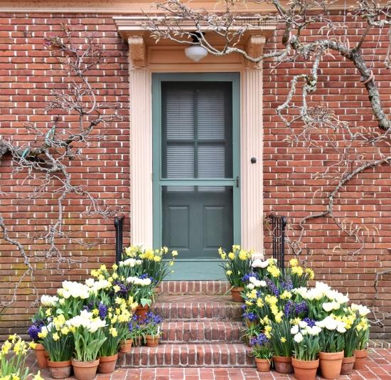 Filoli Doors 1