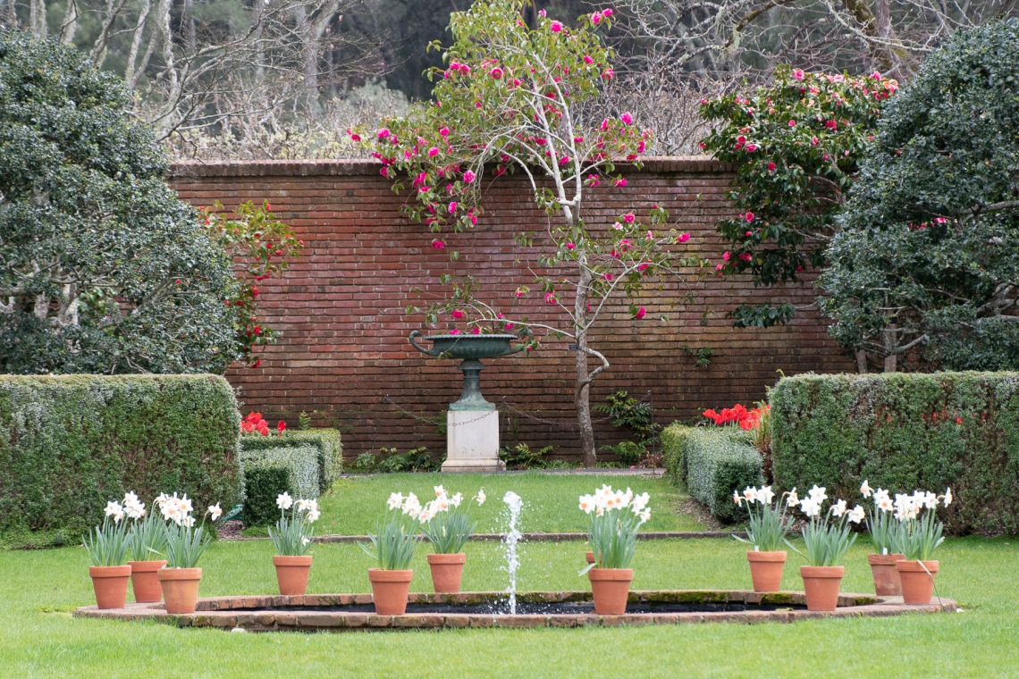 Filoli Gardens 1